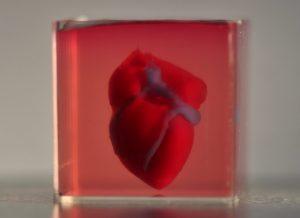 cuore stampato 3d